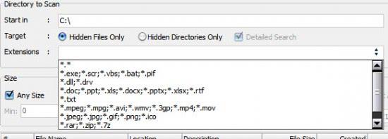 hidden files