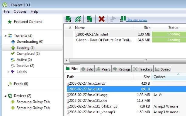 utorrent codec information