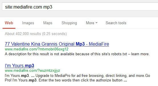 search mediafire