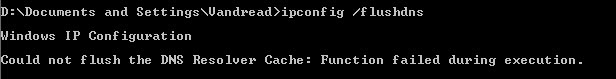 could not flush the dns resolver cache