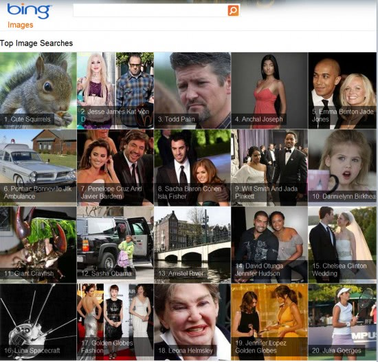 bing top image searches