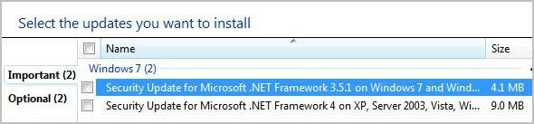 net framework vulnerability