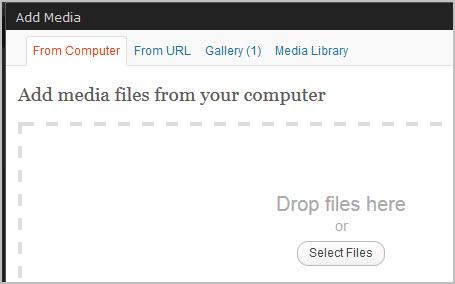wordpress drag drop upload