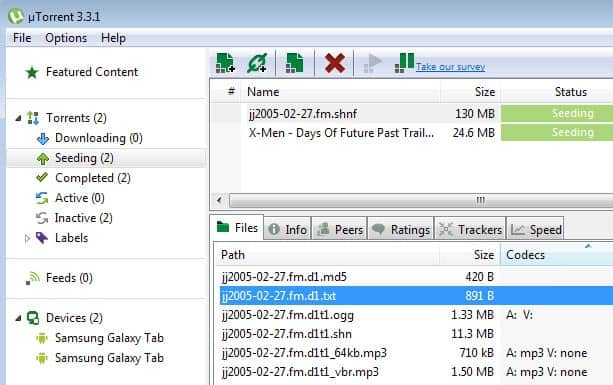 utorrent codec information