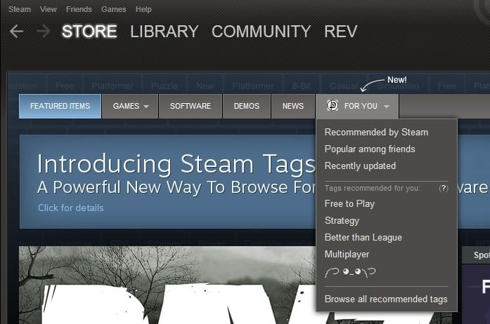 introducing steam tags
