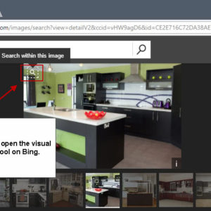 bing visual image search