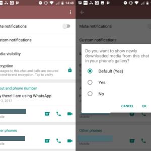 whatsapp chat visibility
